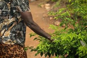 Northern Uganda Refugees Initiative
