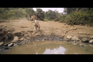 The Need for Safe Water